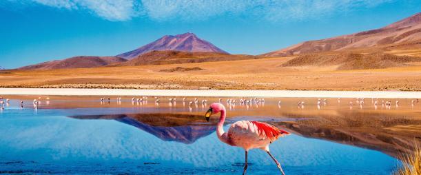 Perú Perú si tú fueses mi hermano del alma y lo eres